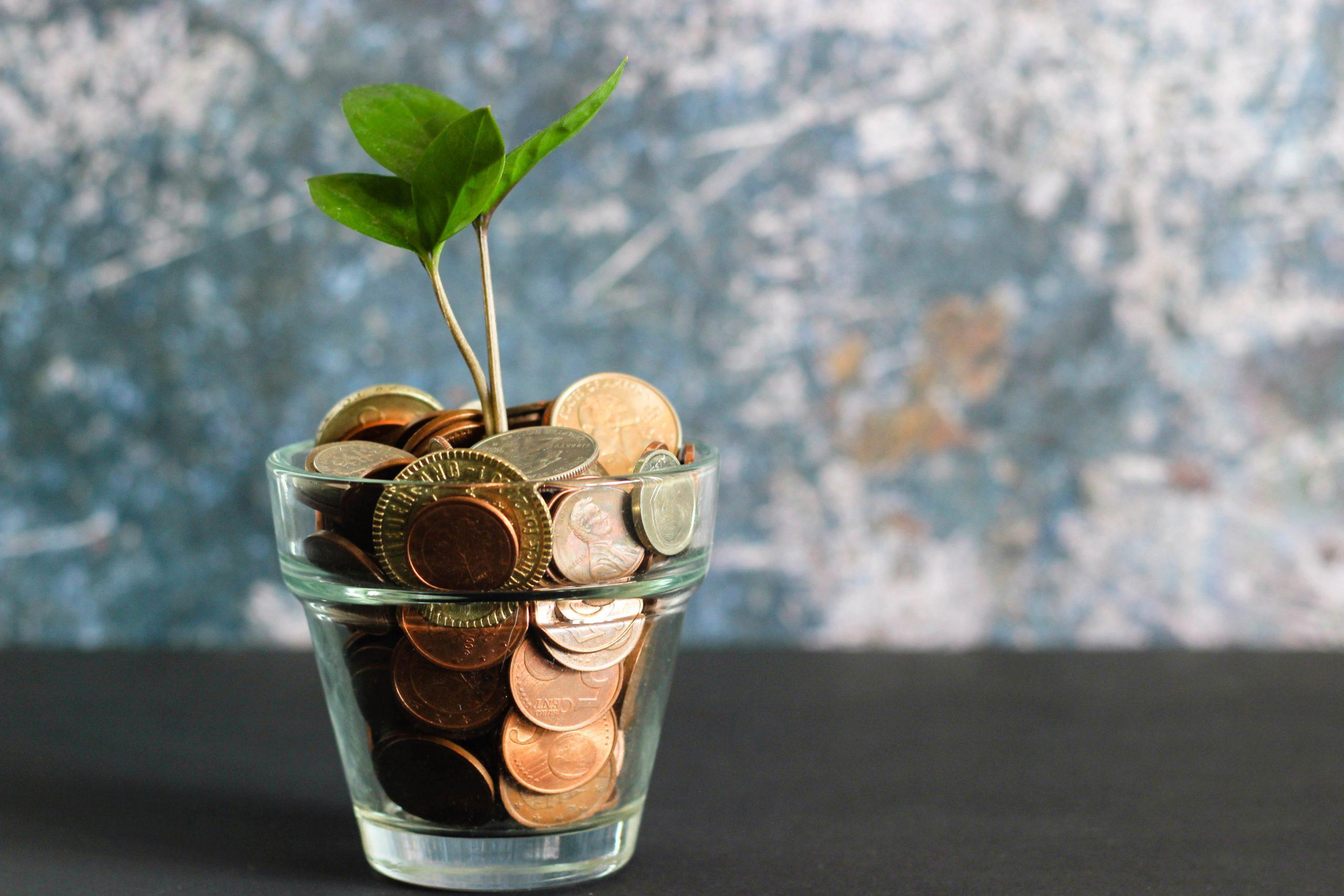Münzen in einem Wasserglas