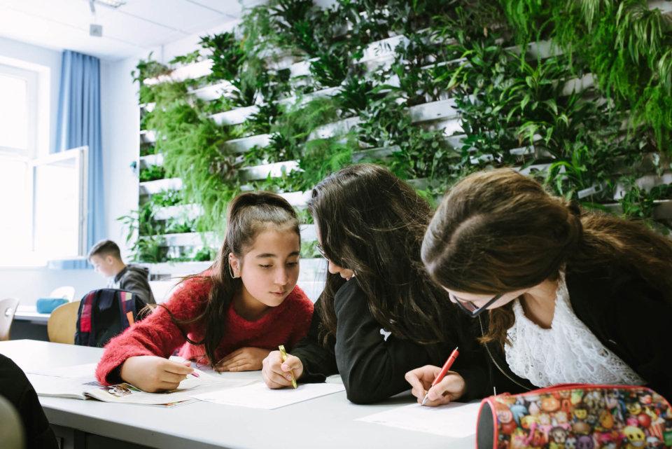 Angenehme Atmosphäre: Die Schüler_innen lernen laut eigener Aussage in den Klassenräumen mit Grünelementen besser und können sich dort besser konzentrieren.